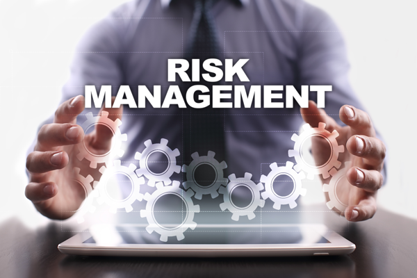 Image result for IT risk management