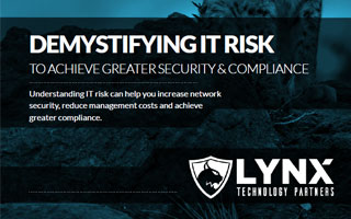Demystifying IT Risk